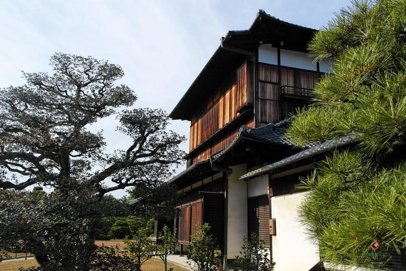 Palacio Honmaru y árboles japoneses.
