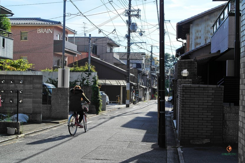 Excursiones en bici por Kioto.